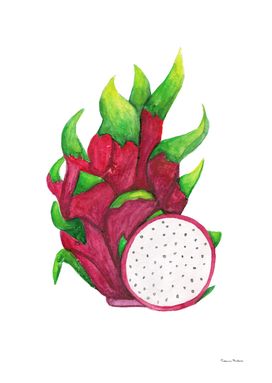 Bright juicy pitaya. Tropical fruit