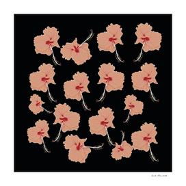 Delicate Hibiscus Flowers
