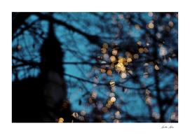 Prague Sparkles