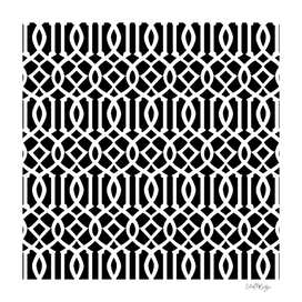 Black & White Imperial Trellis