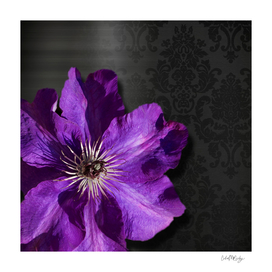 Purple Flower Dark Metallic & Damask