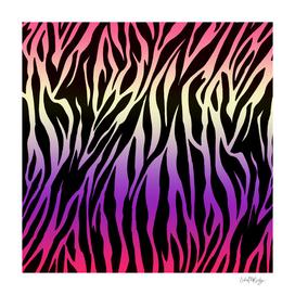 Zebra Print Colorful Gradient