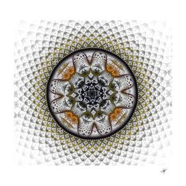 medallion fractal digital art