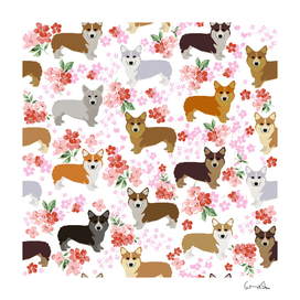 Corgis corgi dog pattern