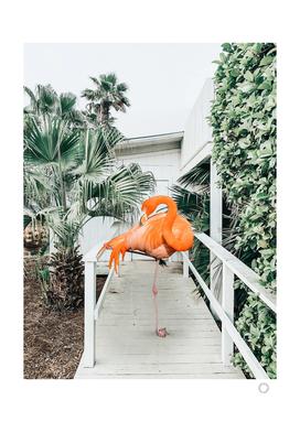 Flamingo Beach House