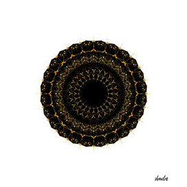 Golden radial mandala ornament on black
