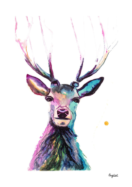 Print of a deer, special bird, forest animal illustration