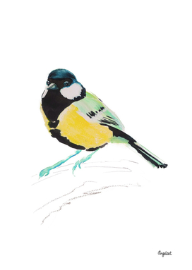 Great tit special bird illustration