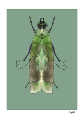 Green moth on green background