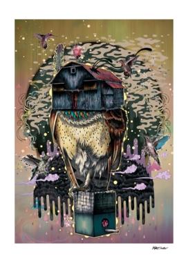 The Barn Owl Fortune Teller