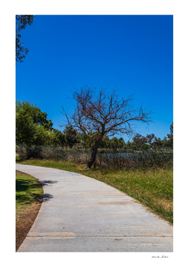 footpath in the park to walk near lake front