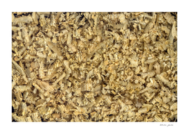 Texture and background from coniferous wood shavings