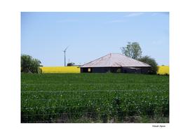 Waubra Wind Farm Victoria