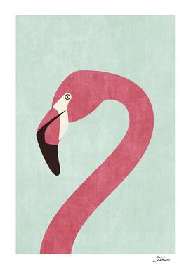 FAUNA / Flamingo