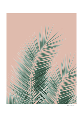 Soft Green Palm Leaves Dream - Cali Summer Vibes #1
