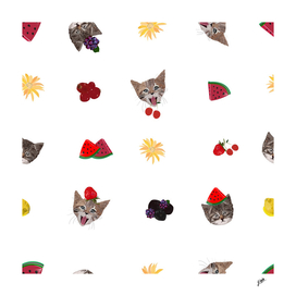 Cute cats and fruity pattern white background
