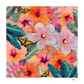 Hale Aloha Hibiscus