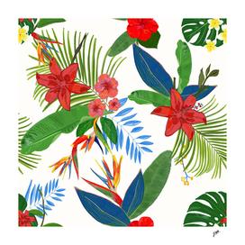 Heaven bird flower, lily and frangipani tropical flower