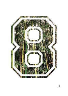 Tropical Bamboos |  Pattern
