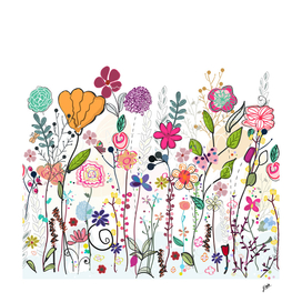 Colorful wildflowers and flower