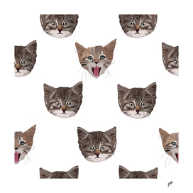 Cute cat head pattern