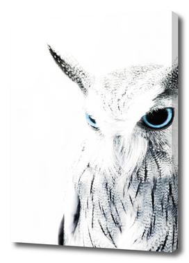 Owl II