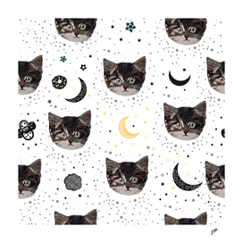 Cute cats and space pattern