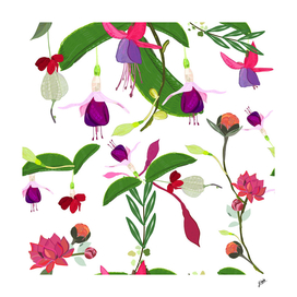 Fuschia, clerodendrum and rose bud vibrant colored patern