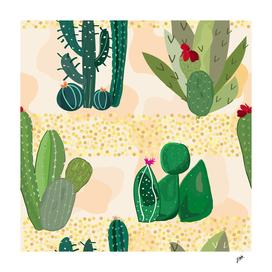 luminous sands in the desert. Succulent and cactus