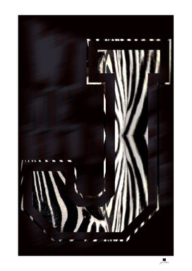 Zebra | Pattern