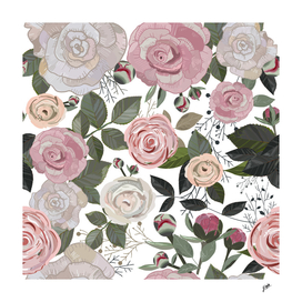Peony and rose pattern with white background