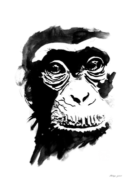 orangutan in a tree 2