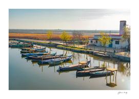 Small shore with docked gondola boats. Rice fields. Spain