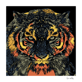 tiger predator abstract feline