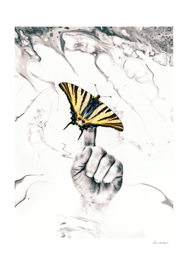 Hand butterfly