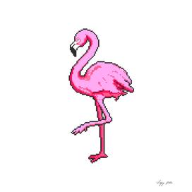 pixel flamingo