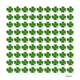 shamrocks clover green leaf