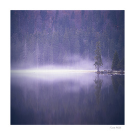 Mist is rising from the lake at dusk