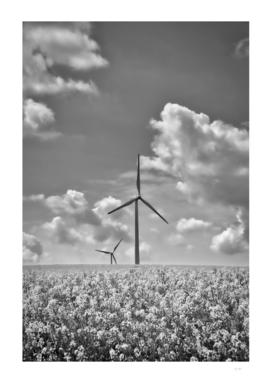 Wind Turbines-France_DSF3959