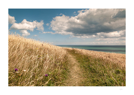 Summer at St. Margerets-on- Cliff, Kent, England