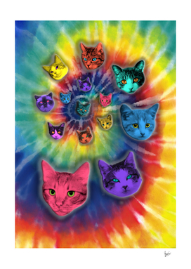 Tie Dye Cats