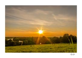 Sunset at Richmond Park London