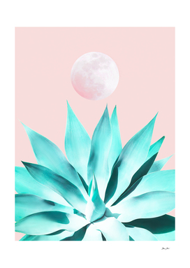 Stellar Agave and Full Moon - pastel aqua and pink