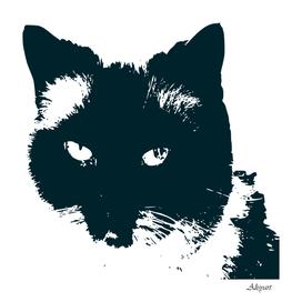 cat nature design animal skin