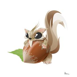 squirrel animal hazelnut cute