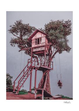 Treehouse - Baños, Ecuador