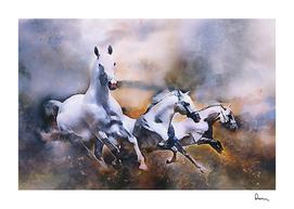horses mammal animal nature