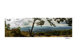 Yonah Mountain Summit