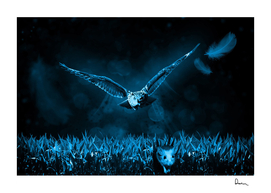 owl mouse hunt night nature
