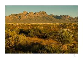 Desert Sunset in Las Cruces, NM